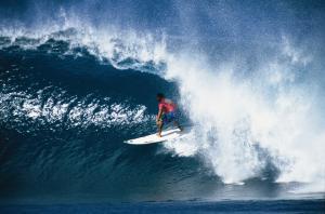 jekylla_surfing