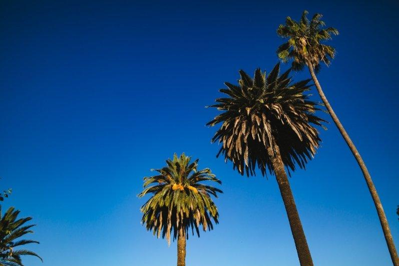 California Roadtrip Roserbrother-4