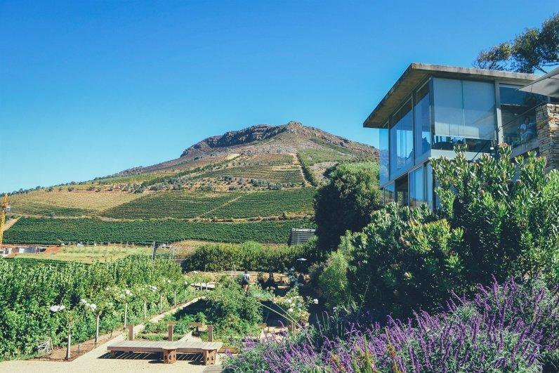 Wein Tour Kapstadt