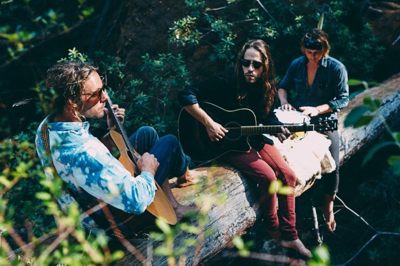 Sean Koch Trio