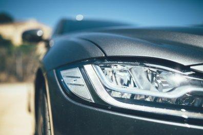 Jaguar SaJaguar-The Art of Performance Tourrdinien-22