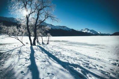 Winterwonderland im Engadin