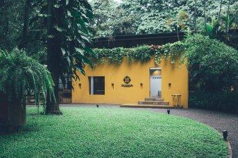 Oase Oasis Chiang Mai