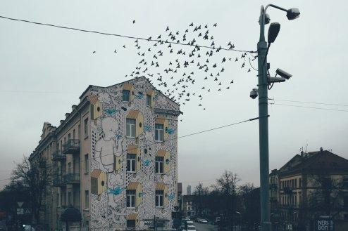 Tauben vor der Markthalle