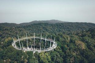 The Penang Hill Habitat