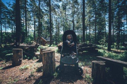 Unterwegs im schwedischen Wald