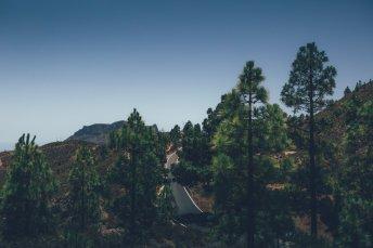 Oasen, Bergstraßen und Dünen