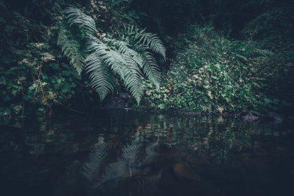 Glengoyne Wasserfall