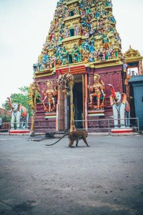 Hindu Sri Sivasubramaniya Swamy Temple, Colombo, Sri Lanka