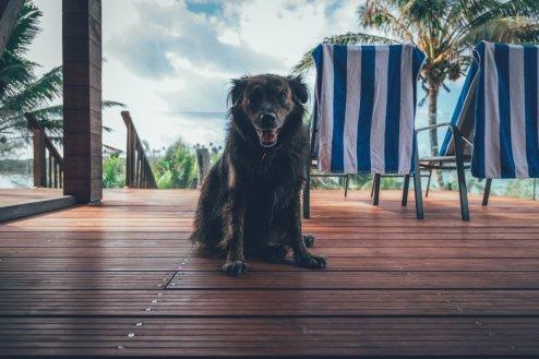 10_Cook_Islands_0468_gefiltert