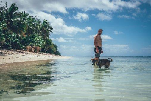 Hundeleben auf den Cook Islands