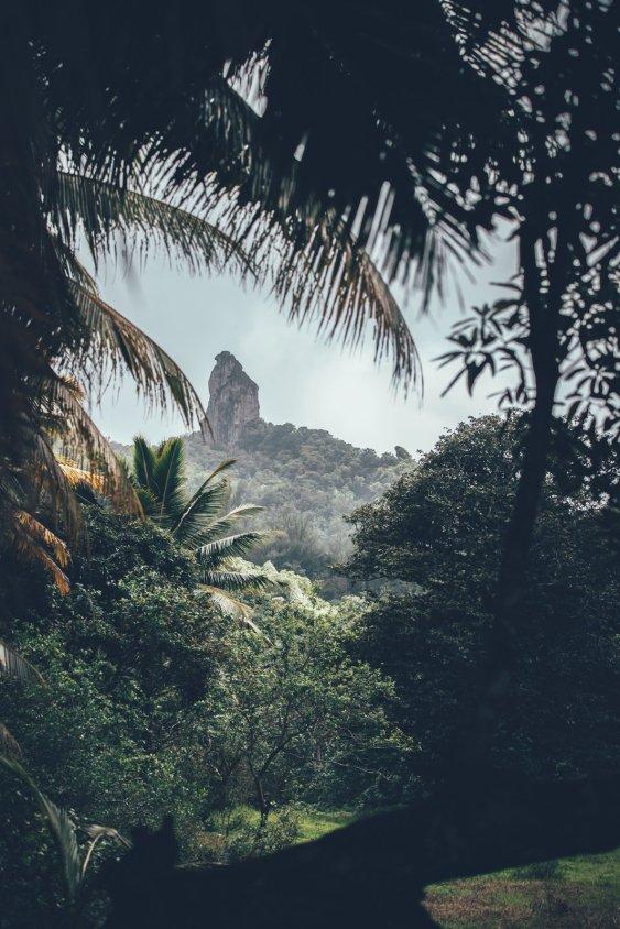 Faszinierende Insel Rarotonga