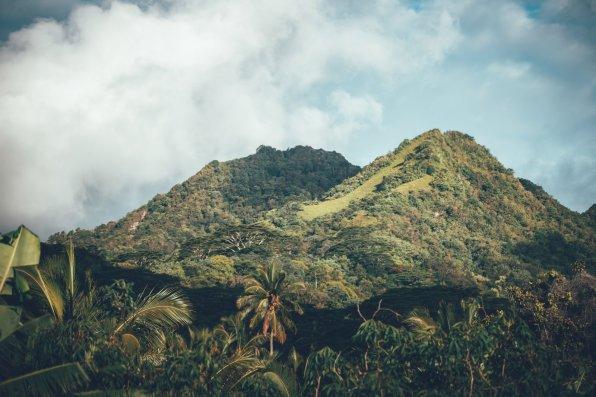 Urlaub auf den Cook Islands - Rarotonga
