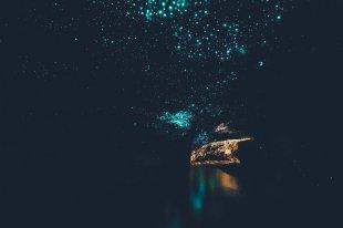Glühwürmchenhöhle in Neuseeland