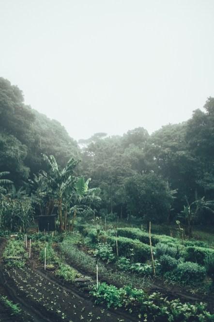 05_Costa_Rica_0060