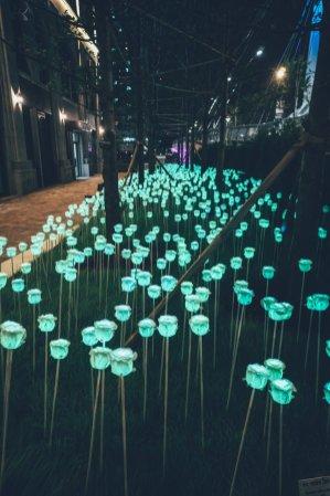 09_Incheon_Korea_0213_gefiltert