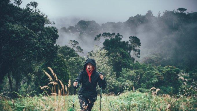 Foto von Hari Pulko