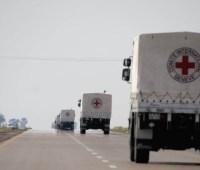 Красный Крест передал в Донецкую область 95 тонн гуманитарной помощи