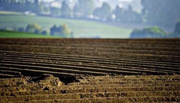 Gesetz über Bodenhandel veröffentlicht