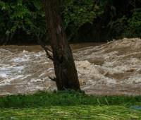 Синоптики предупредили о повышении уровней воды на реках
