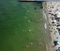 Специалисты Минздрава не запретили купаться на двух одесских пляжах из восьми