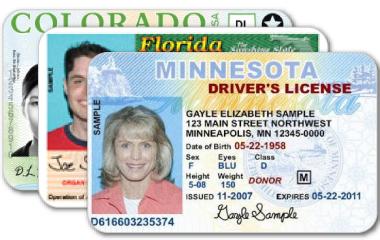 Ejemplo de licencia de manejo