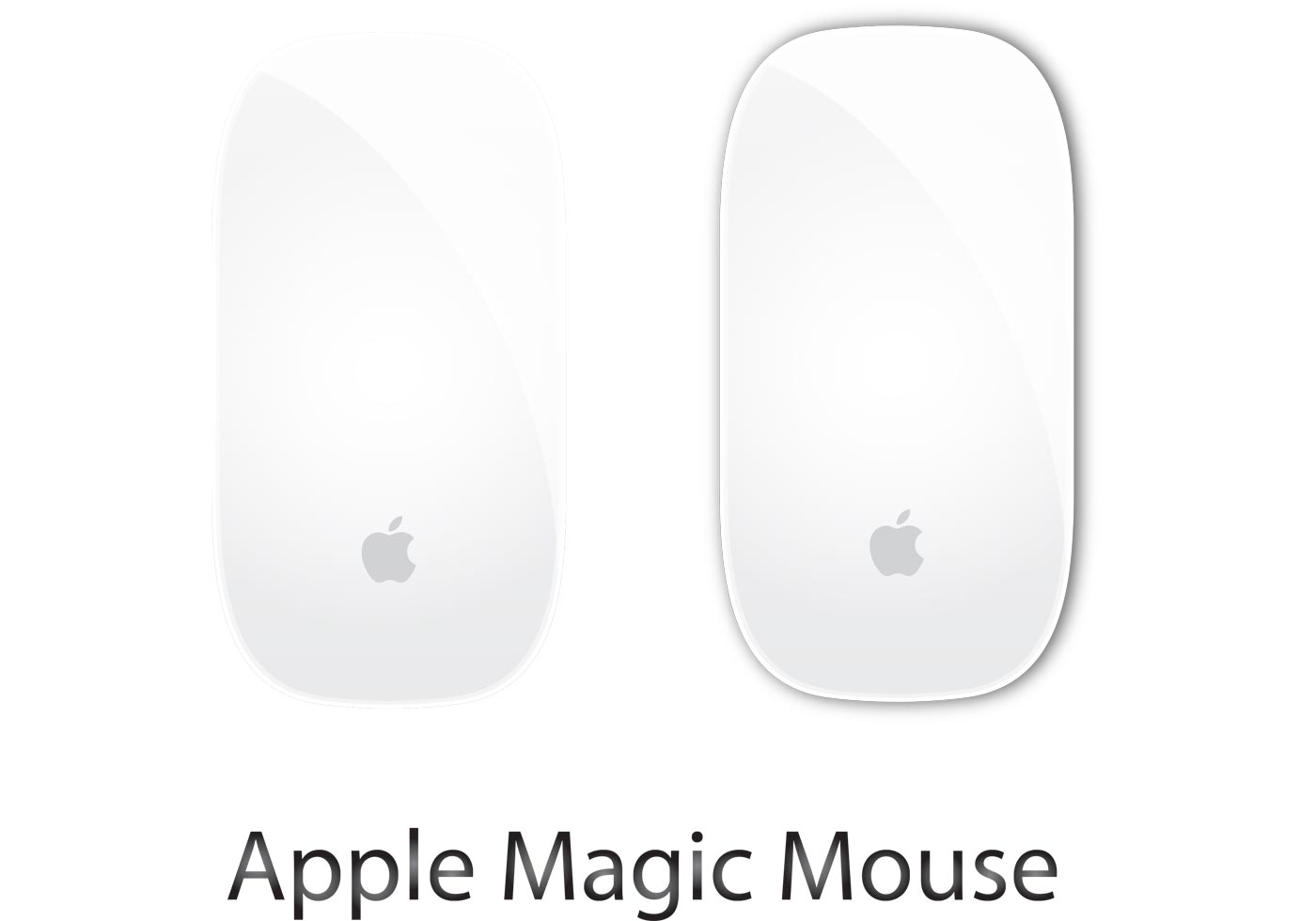 Apple Magic Mouse Vector