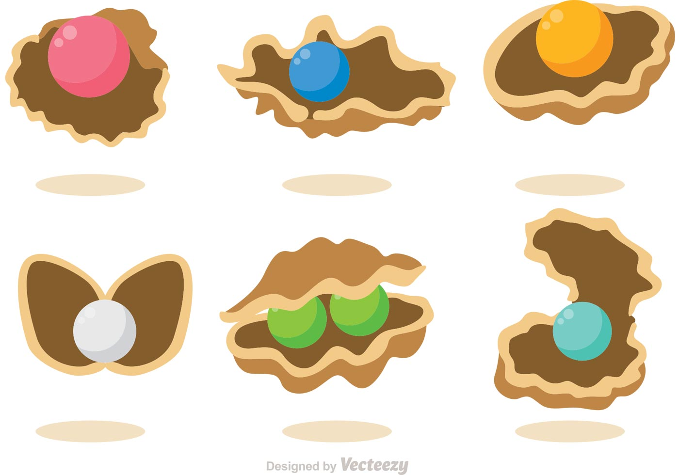 Collection Of Pearl Shell Vectors