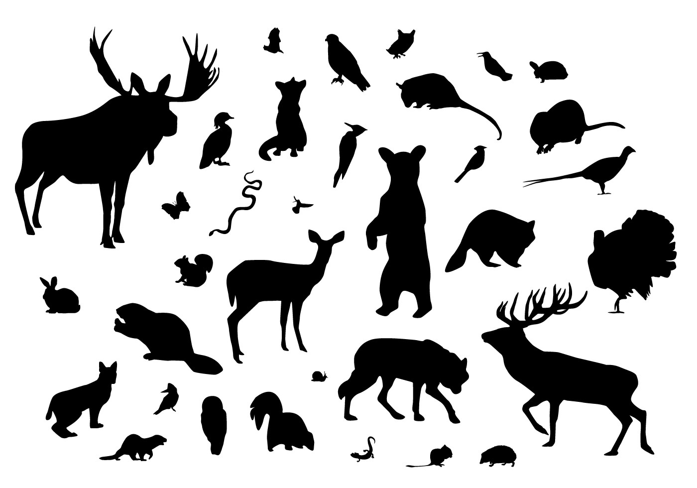 Forest Animal Silhouettes