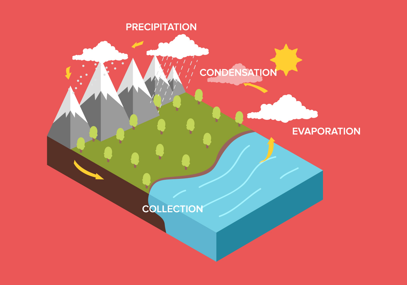 Water Cycle Diagram Free Vector Art