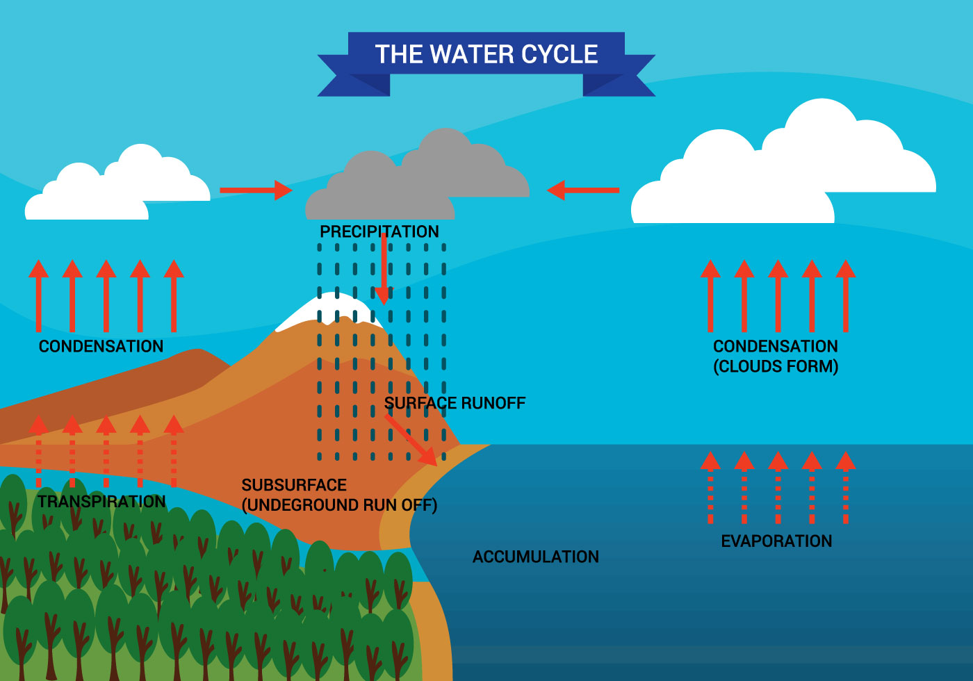 Simple Hydrologic Cycle Diagram