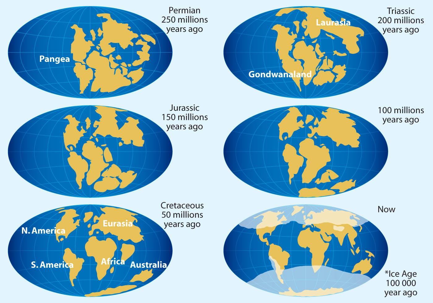 Continental Drift Vector Maps