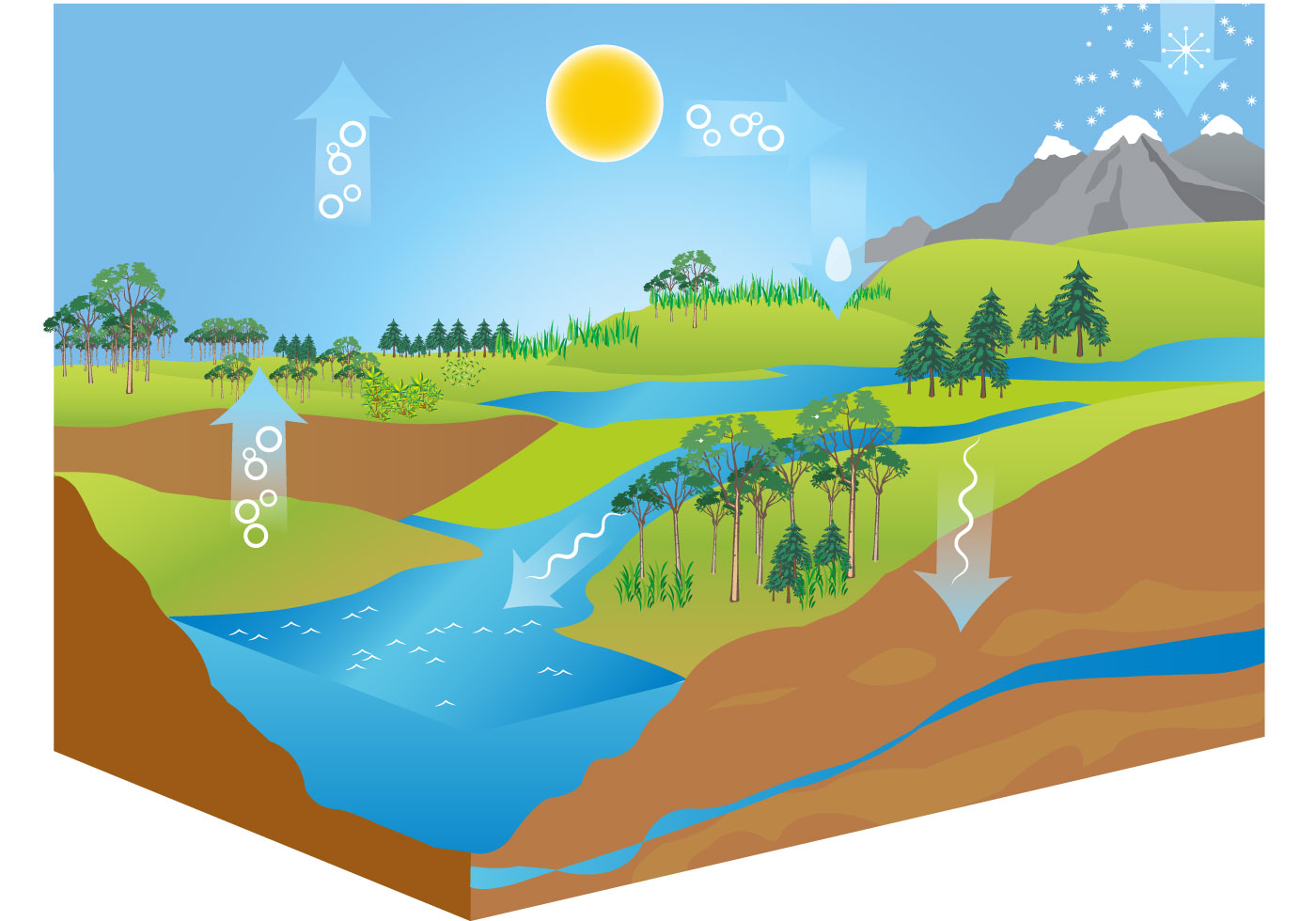Water Cycle Images With Labels