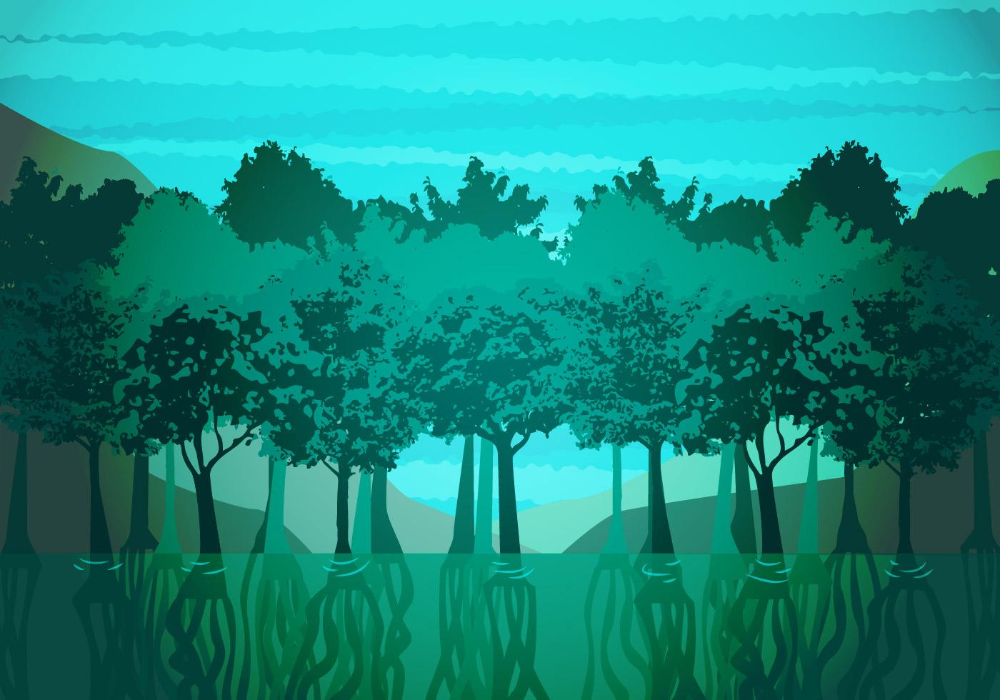 Mangrove Illustration Vector Download Free Vector Art