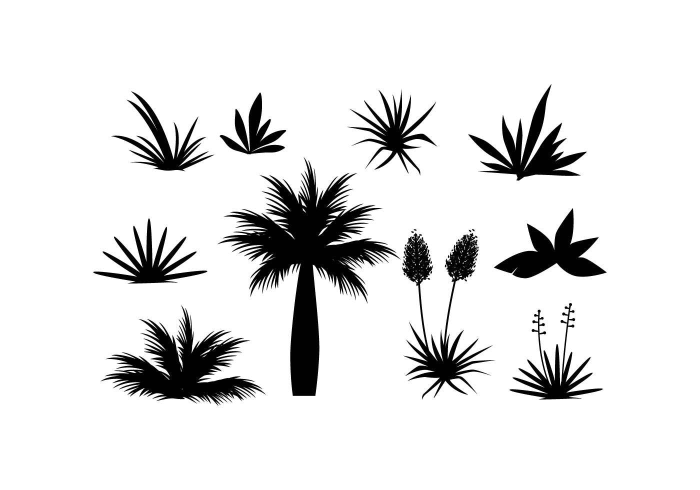 Free Tropical Plant And Grass In Silhouette Vector