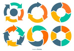 Lifecycle Vector Diagram Collection  Download Free Vector