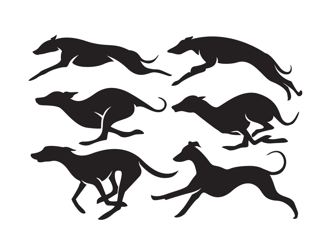 Vector High Quality Whippet Dogs Silhouettes