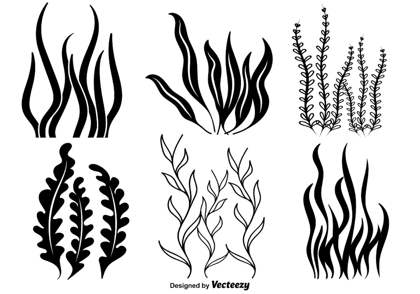 Black And White Clip Art Of Seaweed And Coral Pictures To