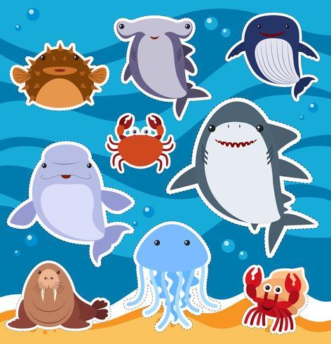 Sticker Design With Cute Sea Animals Download Free Vectors Clipart Graphics Vector Art