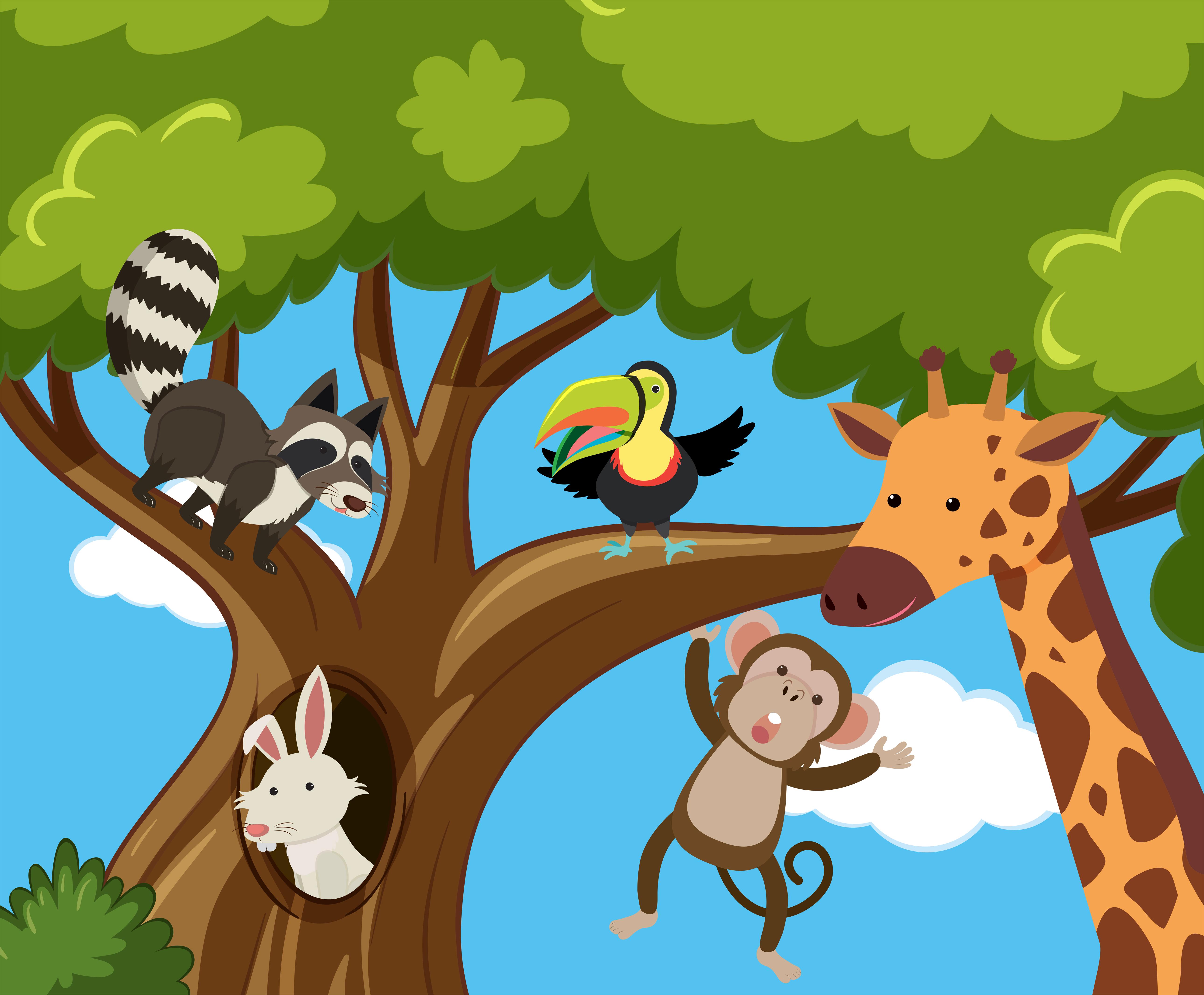 Many Animals On The Tree