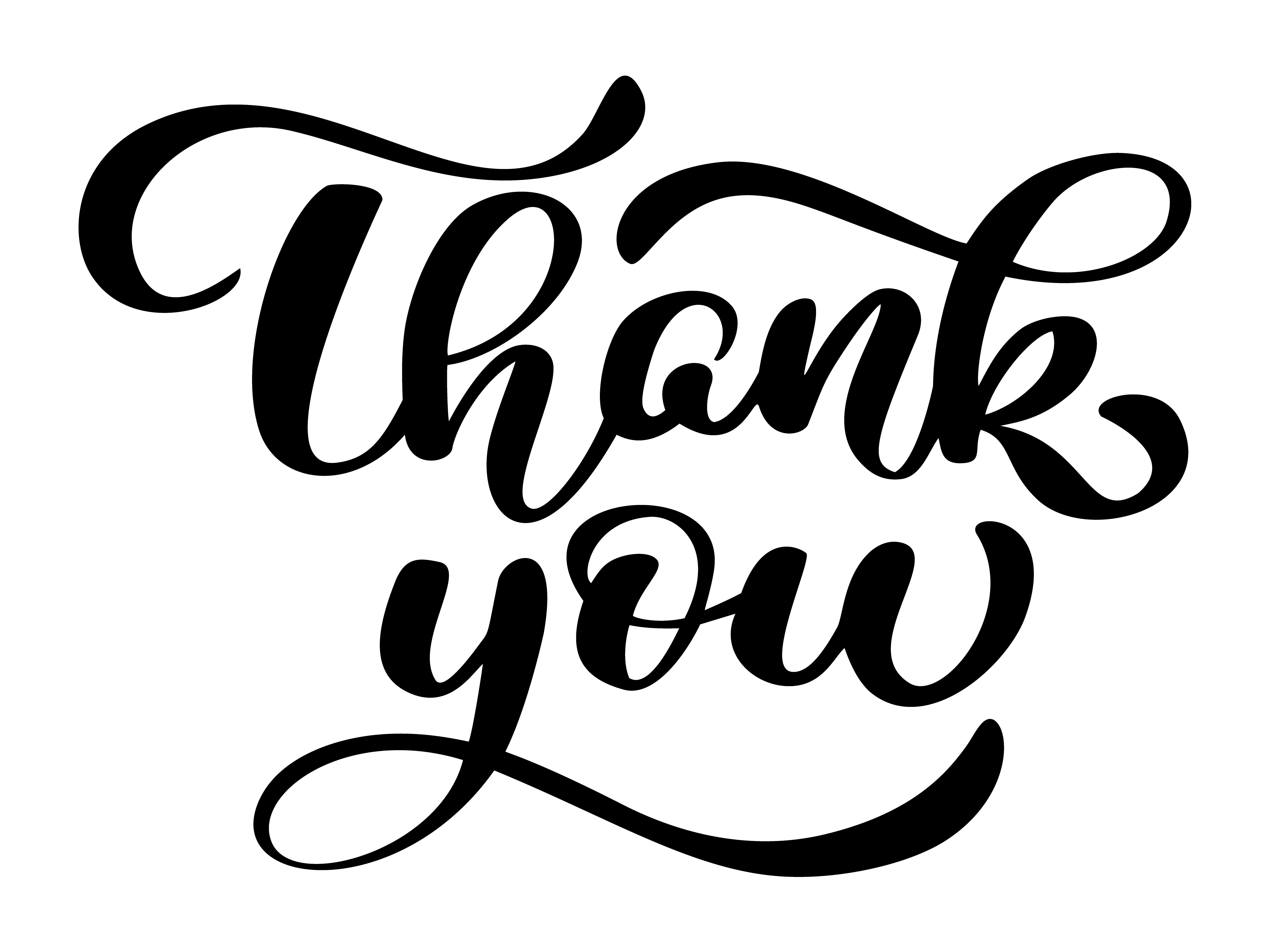 Text Thank You Hand Written Calligraphy Lettering