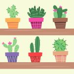 Cactus Plant In Flower Pot Decoration Home Plant Vector Illustration In Flat Style Download Free Vectors Clipart Graphics Vector Art
