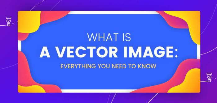 What is a Vector Image: Everything You Need to Know