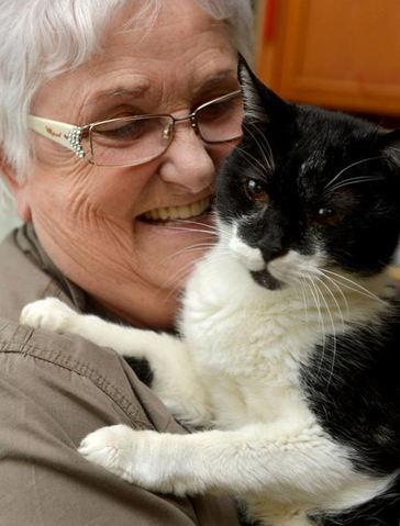 le chat le plus vieux du monde