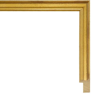 gold picture frames any size you want