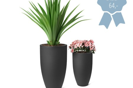 Grote Hoge Plantenpot.Hele Grote Bloempot Great Wandbalkon Bloempotten With Hele Grote