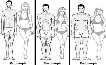 Afbeeldingsresultaat voor lichaam