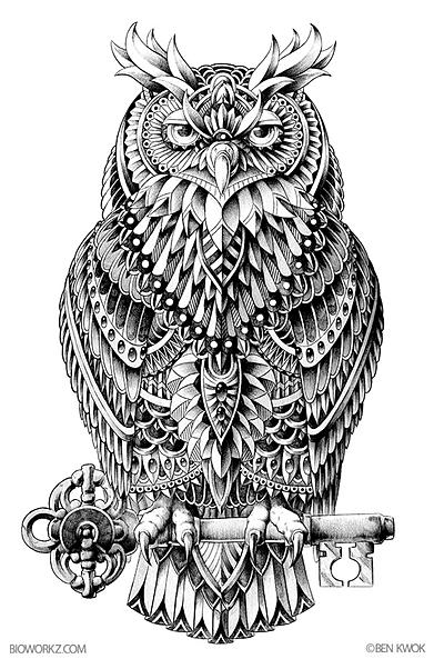Great Horned Owl illustration by Ben Kwok a.k.a BioWorkZ