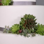 Diy Wedding Cake Stunning Succulents