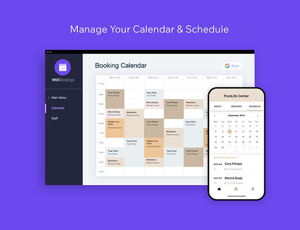 WIX bookings widget useful alternative to calendal for wix users.
